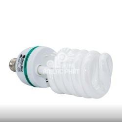 Compact Rạng Đông dạng xoắn CFL HST5 40W.S H8