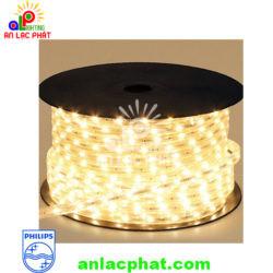 Dây đèn led Philips 31161