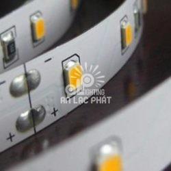 Đèn Led dây trang trí Paragon LED2835 12w