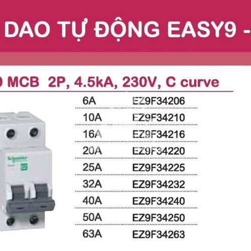 Aptomat Schneider MCB schneider Easy9 2 pha