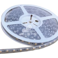 Đèn Led dây Paragon 5050 có 3 màu ánh sáng lựa chọn